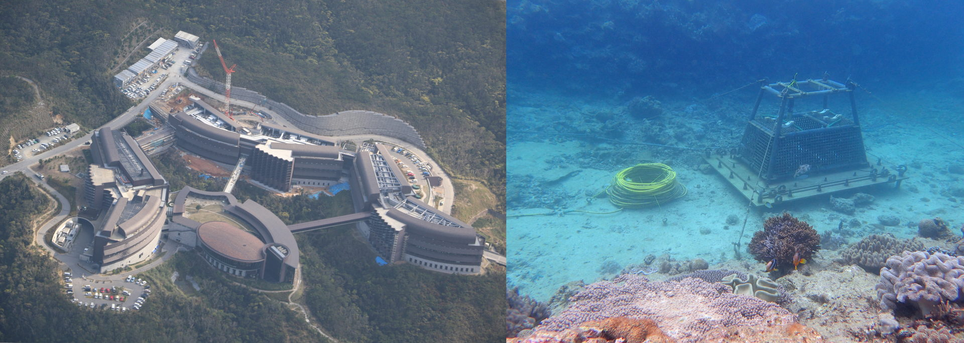Two images side by side. on the left is a photograph of four connected buildings from above. The buildings have modern architecture and are all centred around a smaller building which the other three buildings curve away from. The image on the right is an underwater photograph of a cube frame instrument with a role of yellow wires which sits on the sand, surrounded by coral reef.