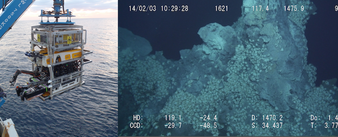 Two images side by side. On the left a photograph of a cube shaped-robot with mechanical arms being lowered from the side of a boat. On the right is an image of a craggy rocky surface in dark waters. The bottom portion of the rocky area is carpeted in hundreds of small white crabs. There is date, time and other information stamped over the top and bottom of the image.