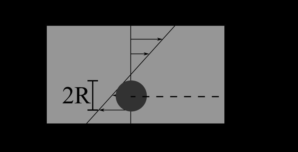 Code Validation Immersed Boundary Method Oist Groups
