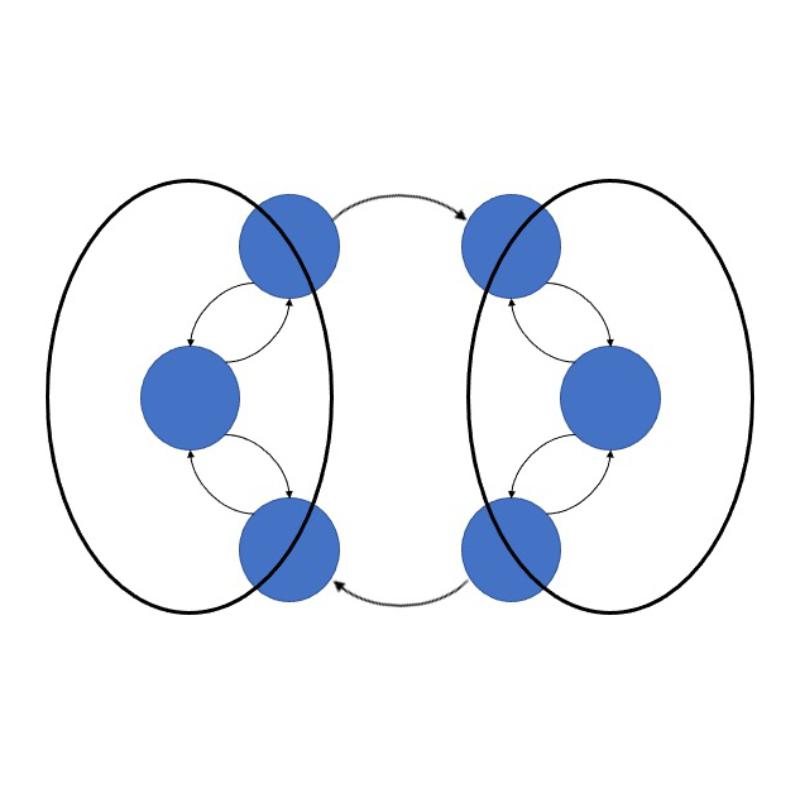 synchrony image